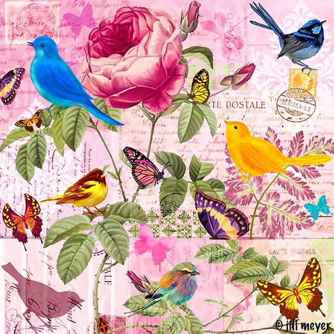 jill meyer-1585 Garden Memoir Rose